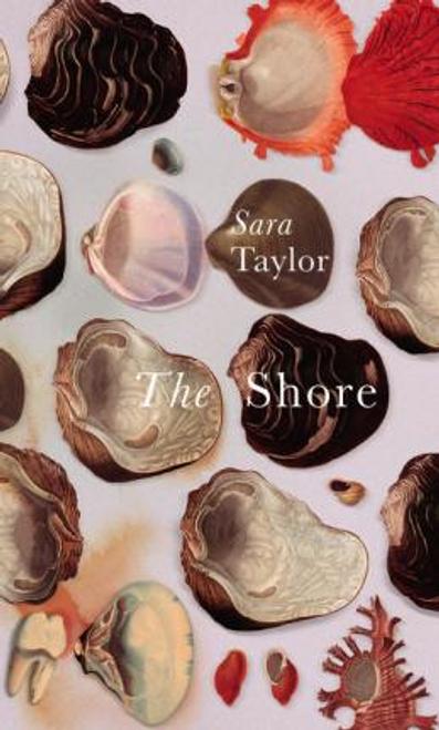 Taylor, Sara / The Shore (Large Paperback)