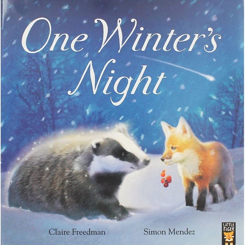 Freedman, Claire / One Winters Night (Children's Picture Book)