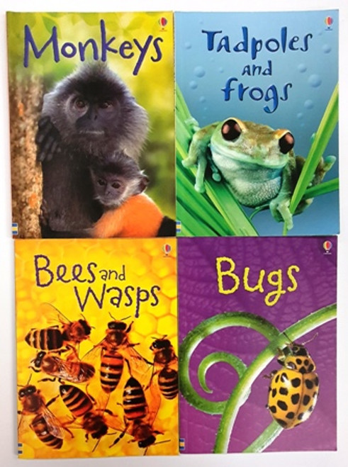 Usborne Beginners (10 Book Collection)