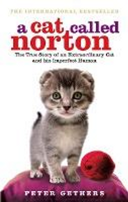 Gethers, Peter / A Cat Called Norton