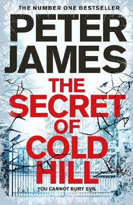 James, Peter / The Secret of Cold Hill (Large Paperback)