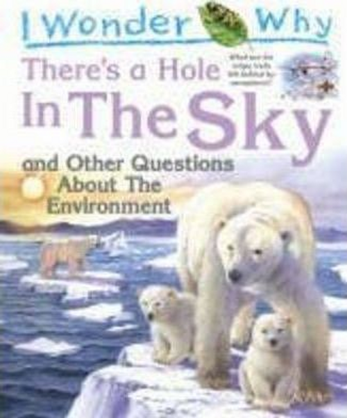 Callery, Sean / I Wonder Why There's a Hole in the Sky (Children's Picture Book)