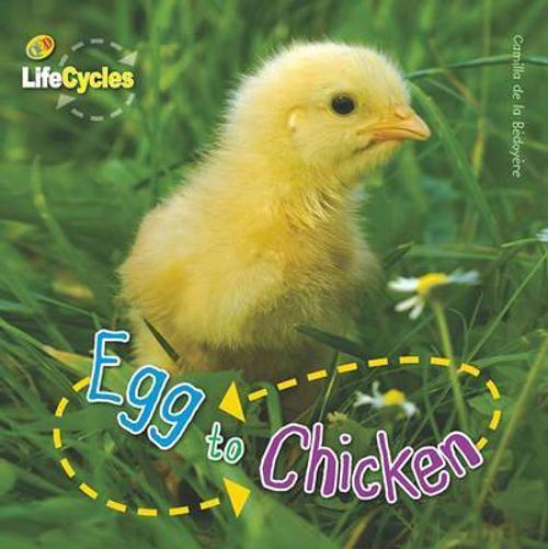 De La Bedoyere, Camilla / Lifecycles: Egg to Chicken (Children's Picture Book)