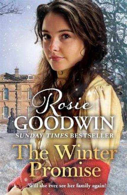 Goodwin, Rosie / The Winter Promise (Hardback)