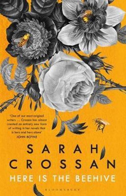 Crossan, Sarah / Here is the Beehive (Hardback)