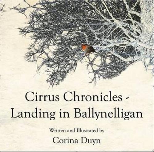 Duyn, Corina / Landing in Ballynelligan