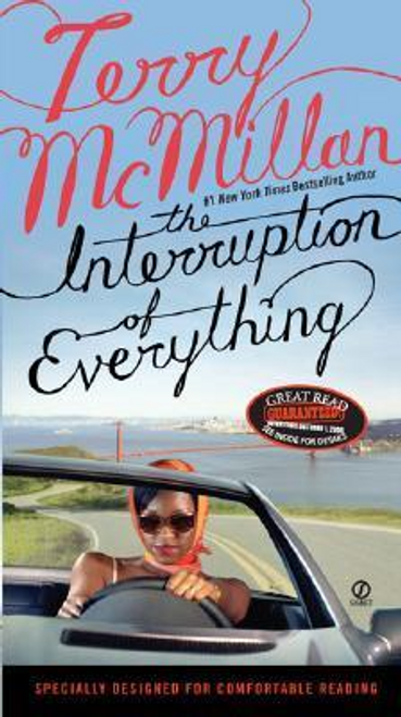 McMillan, Terry / The Interruption of Everything