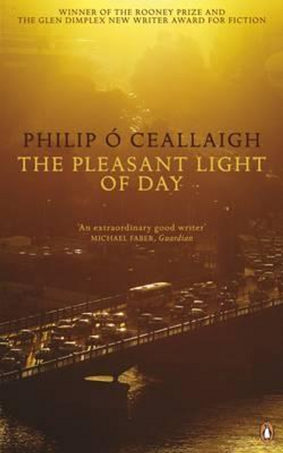 Ó Ceallaigh, Philip / The Pleasant Light of Day (Large Paperback)