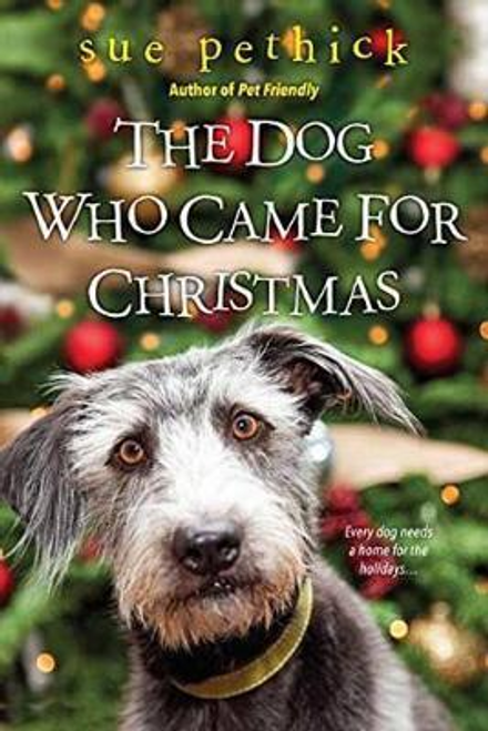 Pethick, Sue / The Dog Who Came for Christmas (Large Paperback)