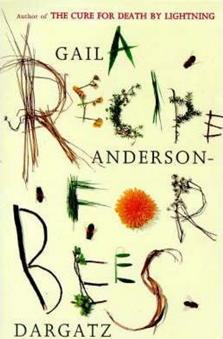 Anderson-Dargatz, Gail / A Recipe for Bees (Large Paperback)