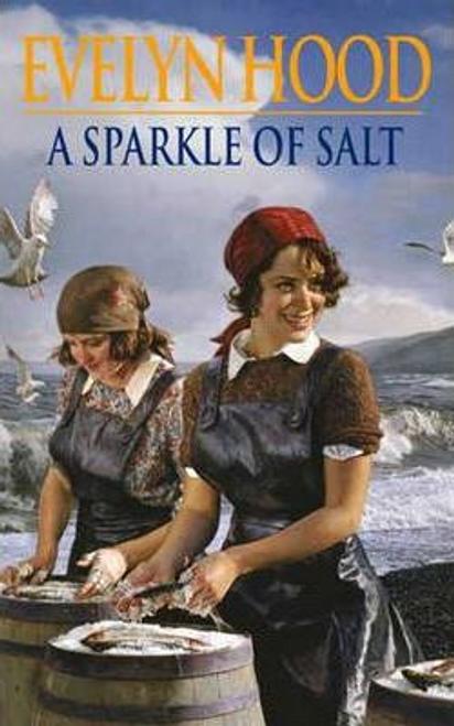 Hood, Evelyn / A Sparkle of Salt (Large Paperback)