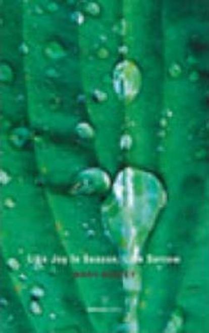 Dorcey, Mary / Like Joy in Season, Like Sorrow (Large Paperback)