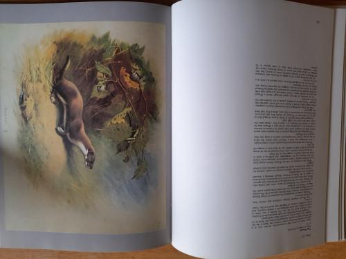 Thorburn, Archibald - Thorburn's Mammals - HB 3rd Impression 1979 - Originally 1974