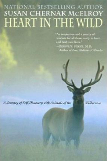 Mcelroy, Susan Chern / Heart in the Wild (Large Paperback)