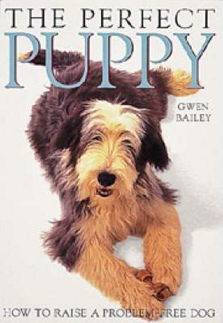 Bailey, Gwen / The Perfect Puppy (Large Paperback)