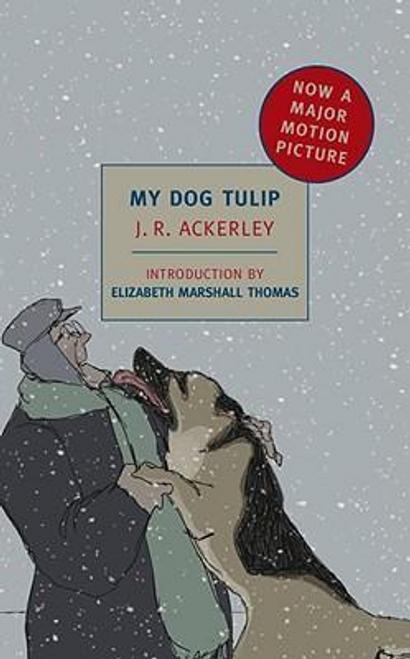 Ackerley, J. R. / My Dog Tulip