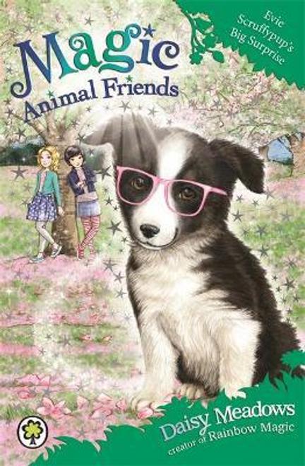 Meadows, Daisy / Magic Animal Friends: Evie Scruffypup's Big Surprise : Book 10