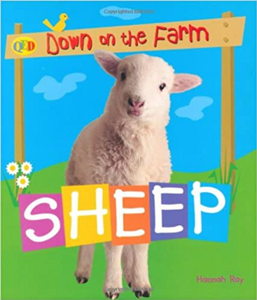 Down on the Farm: Sheep (Children's Picture Book)
