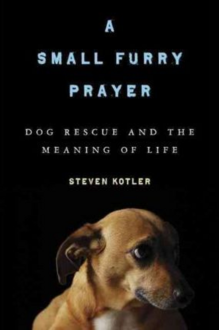 Kotler, Steven / A Small Furry Prayer (Hardback)