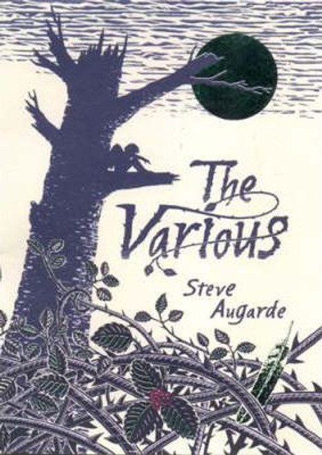 Augarde, Steve - The Various - Hardcover 1st Edition 2003 - Touchstone Trilogy , Book 1