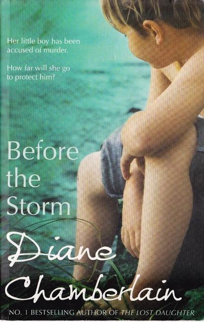 Chamberlain, Diane / Before the Storm