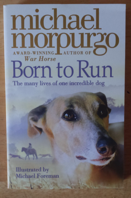 Morpurgo, Michael Born to Run - PB BRAND NEW - Schools Reading List
