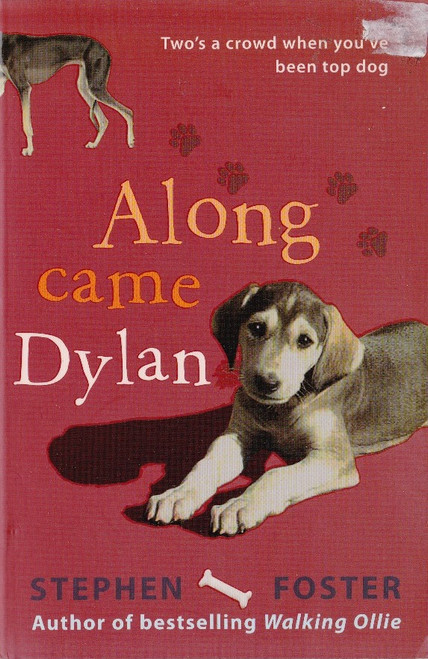 Foster, Stephen / Along Came Dylan