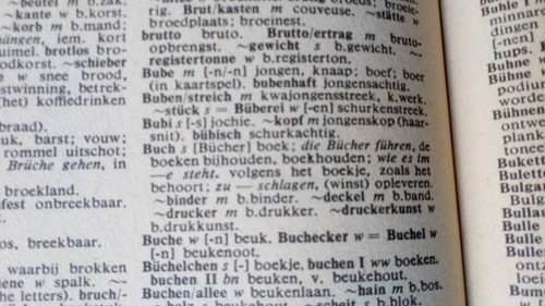 Duits Nederlands Woordenboek ( German- Dutch Dictionary) PB 1980