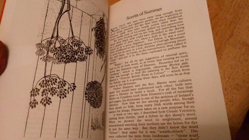 Viney, Michael - Another Life - PB - Irish Times 1979 Mayo , Illustrated Rural Life - Nature Writing