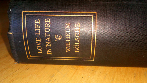 Bolsche, Wilhelm - Love-Life in Nature : the story of the evolution of Love  - HB - 1931 - Vintage - Biology