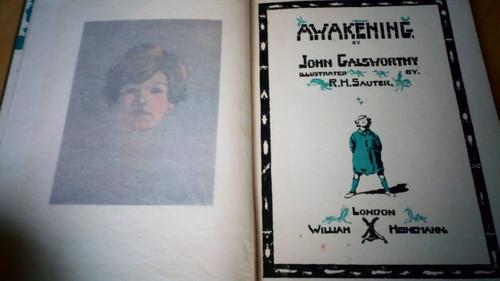 Galsworthy, John - Awakening - Hb 2nd ed -1935 illustrated Vintage children's Book
