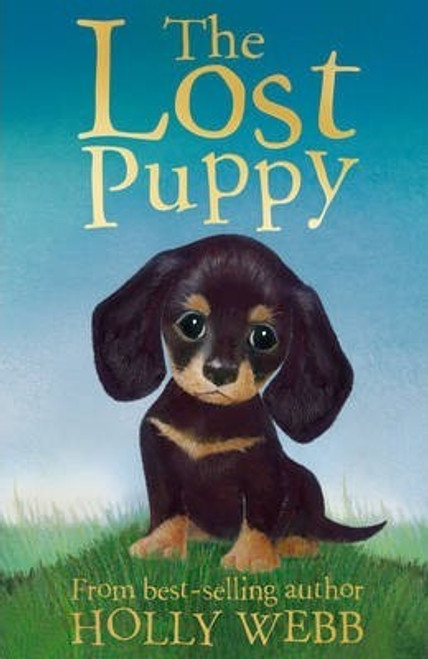 Webb, Holly / The Lost Puppy