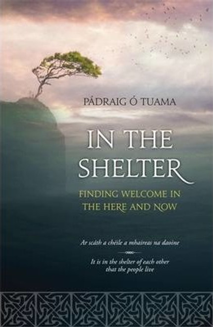 O'Tuama, Padraig / In The Shelter (Large Paperback)