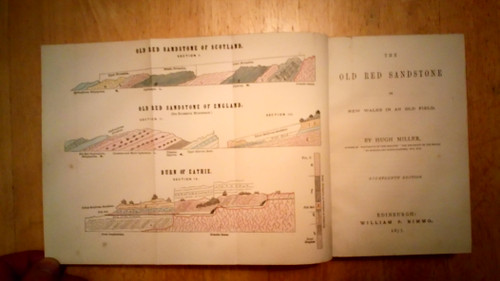 Miller, Hugh - The Old Red Sandstone : Or New Walks in an Old Field - HB , Nimmo 1873 - Archaeology & Geology