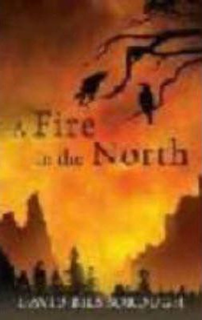 Bilsborough, David / A Fire in the North (Large Paperback)