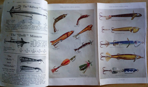 colour images of flies and lures