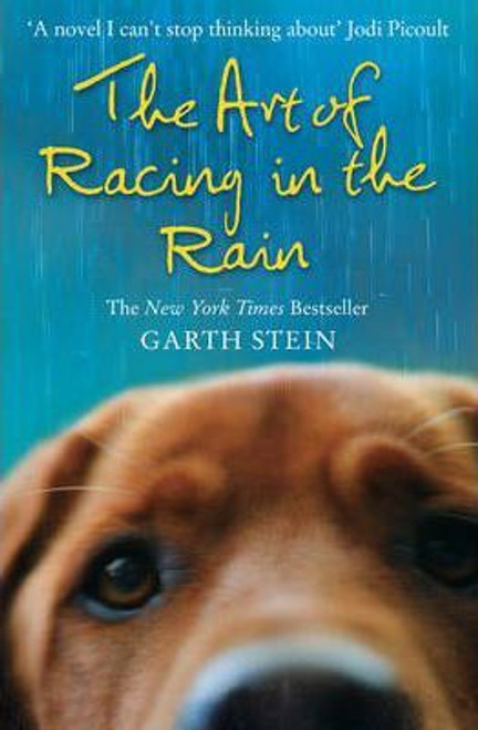 Stein, Garth / The Art of Racing in the Rain
