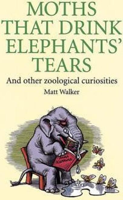 Walker, Matt / Why Do Moths Drink Elephants' Tears? : And other zoological curiosities (Hardback)