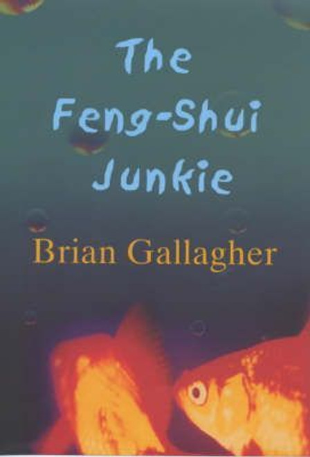 Gallagher, Brian / The Feng Shui Junkie (Hardback)