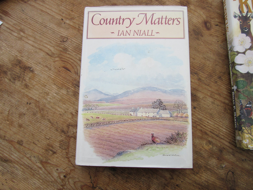 Niall, Ian / Country Matters (Hardback)