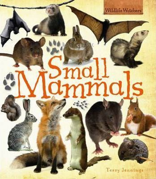 Jennings, Terry / Small Mammals (Children's Picture Book)