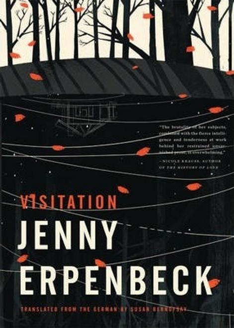 Erpenbeck, Jenny / Visitation