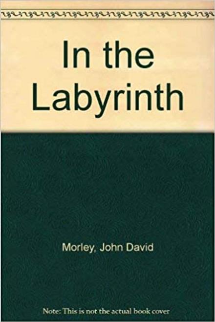 Morley, John David / In the Labyrinth