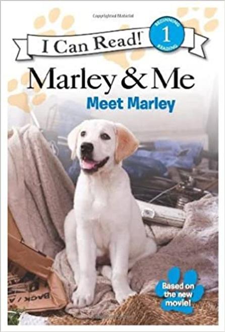 Marley,Meet / Xmeet Marley Carnival