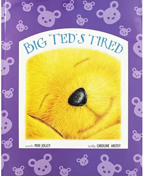 Jolley, Mike / Big Teds Tired (Children's Picture Book)