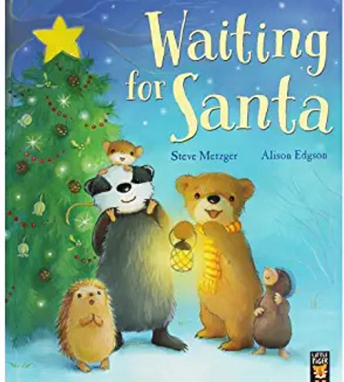 Metzger, Steve / Waiting For Santa (Children's Picture Book)