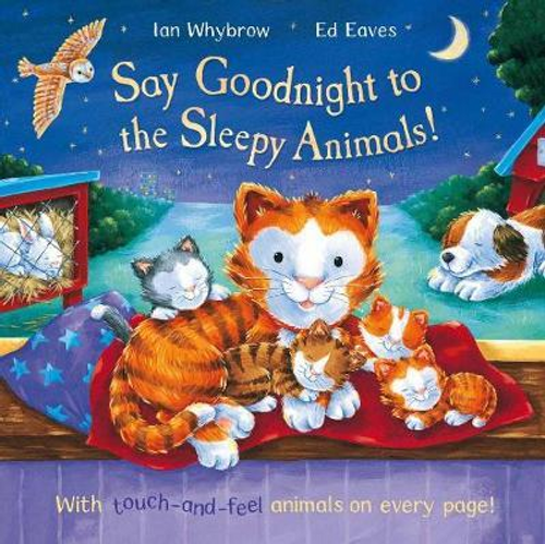 Whybrow, Ian / Say Goodnight to the Sleepy Animals! (Children's Picture Book)