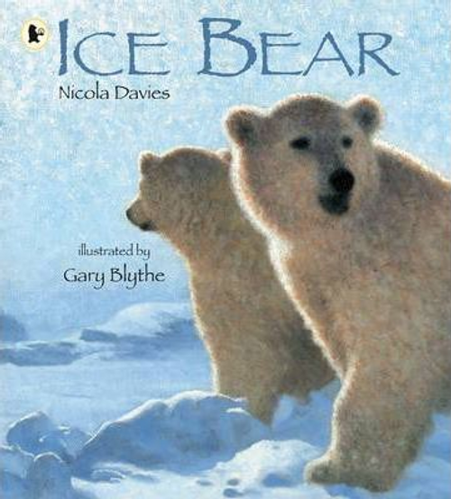Davies, Nicola / Ice Bear (Children's Picture Book)