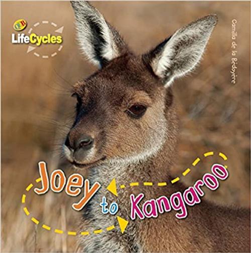 De La Bedoyere, Camilla / Joey to Kangaroo (Children's Picture Book)