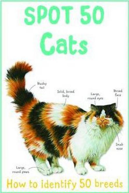 Gallagher, Belinda / Spot 50 Cats (Children's Picture Book)